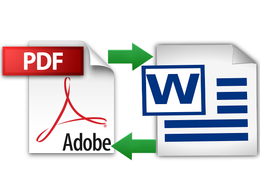 Type or convert 12 pages of PDF file into MS WORD