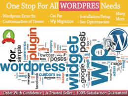 Fix WordPress error,fix css issue, optimization,theme customization