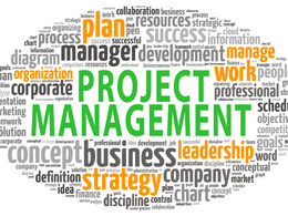Provide 4 hours of Project Management consulting services