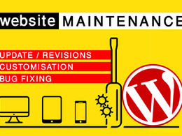 Provide 30 minutes of maintenance / update / fixes to WordPress website