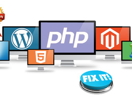 Fix any 1 issues in your websites html css php .net, wordpress, joomla, or other cms