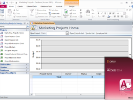 Build MS Access 2010 database to specifications in 3 bus days.
