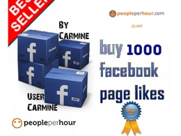 Send you real genuine 1000 Facebook Page Likes or photo post likes