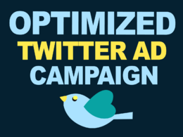 Setup and manage Twitter ad campaign for 5 days