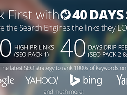 Help you to rank first in Google, 55 PR10 Backlinks, 40 days SEO Campaign
