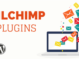 Setup mailchimp api plugin into your wordpress site