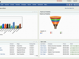 Offer zoho CRM consultancy and customization support