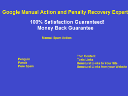 Revoke Google Manual Action and Penalty