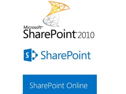 Support you for any sharepoint project