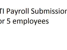 Run payroll for 5 employees every month