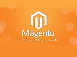 Do magento work for you