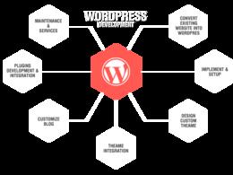 Offer wordpress web development