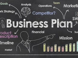 Write an investors' ready business plan