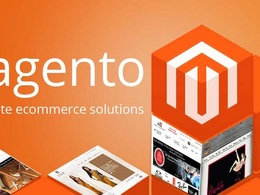 Fix or customize your Magento eCommerce site