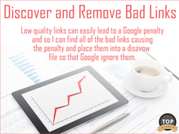 Fix Google Penguin (Bad Links) Penalty by Identifying and Dealing with Bad Back Links