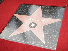 Make your name or business the latest member of the Hollywood Walk of Fame!