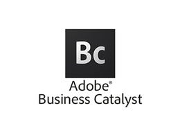 Build, Change, Fix site on Adobe Business Catalyst
