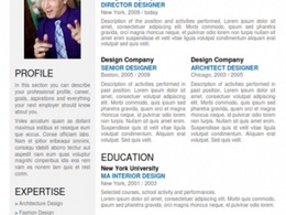 Professionally write, edit and design an executive search, stand-out CV