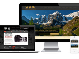 Design and develop your responsive wordpress website that will be search engine ready