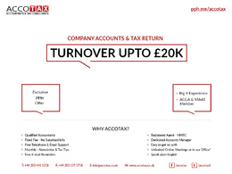 Prepare & File Year End Accounts to Companies House & HMRC - Turnover upto £20K/yr