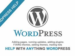Offer 1hr of wordpress support, updates, customisation etc.