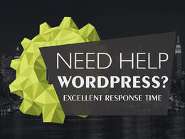 FIX YOUR WORDPRESS, HTML, CSS or PHP error and issue less than 24 HOUR