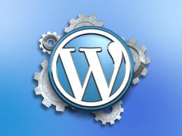 Provide 1 hour customization on wordpress