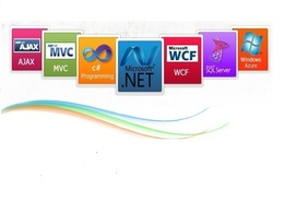 Develop Asp.Net ,Asp.Net MVC Web application or Windows Desktop application