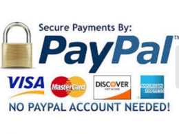 Integrate Paypal payment gateway and fix paypal issues