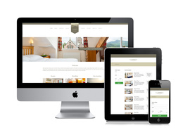 Design and build a responsive Wordpress Website including SEO package