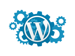 Make your Wordpress website