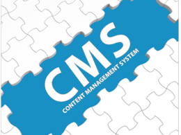 Develop a custom CMS ADMIN system and web services for your mobile App