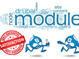 Fix drupal issue, update core and develop modules