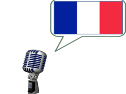 Record up to 150 words of voice over in French male/female