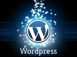 1 Hour WordPress Support