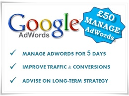 Manage your eCommerce AdWords campaigns for 5 days improving and keeping them updated