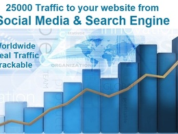 Deliver 25000+ adsense-safe REAL traffic  to your website within 72 hours
