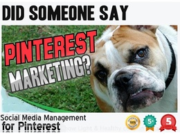 Pinterest Marketing Campaign - Manage And Promote Your Pintrest Profile