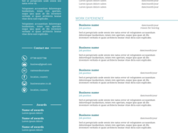 Design a creative and professional CV for you to stand out from the crowd