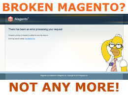 Fix any Magento issue