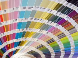 Create a colour palette for your brand/business