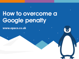 Provide SEO & Google Penalty Audits - Penguin & Panda Penalties