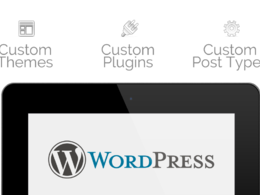 Setup wordpress with free theme and plugin