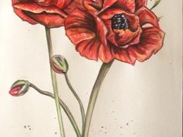 Create a beautiful watercolour illustration