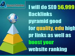 SEO 56,999 Backlinks Good for Quality, Edu High PR and Google SEO Safe Link Building