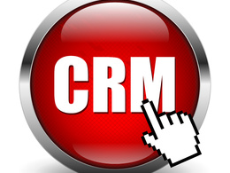 Provide CRM System Support for One Hour