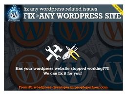 Do wordpress fix /bugs