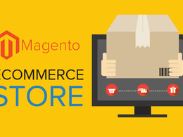 Install Magento and setup theme issue fix bug etc  : $10/2 hours