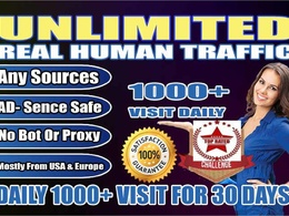 Drive 1000 USA Traffic Daily for 30 Days to boost Google SERP