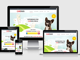 Design & develop bespoke,responsive, optimised WordPress Website